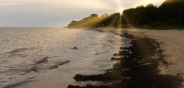 Shoreline by the Baltic Sea